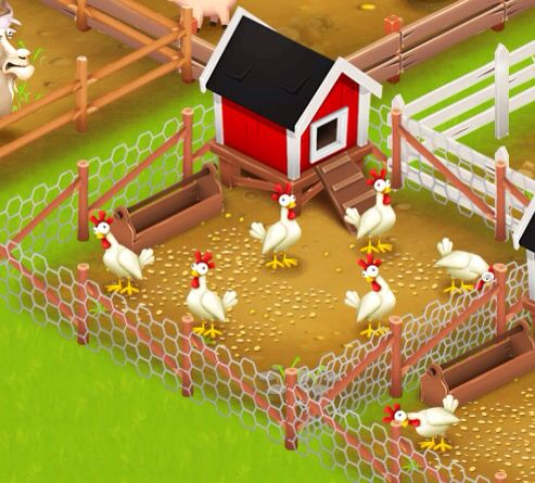 Proceed higher levels on hay day